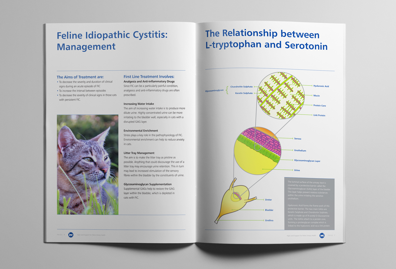 Protexin Cystophan brochure design