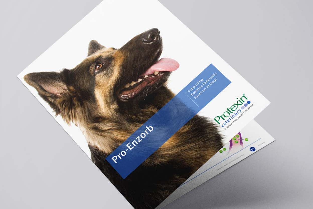 Protein Pro-Enzorb brochure